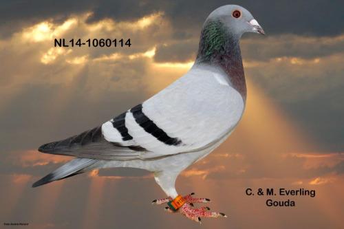 NL14-1060114
