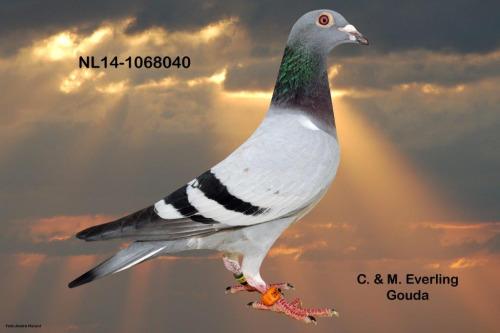 NL14-1068040