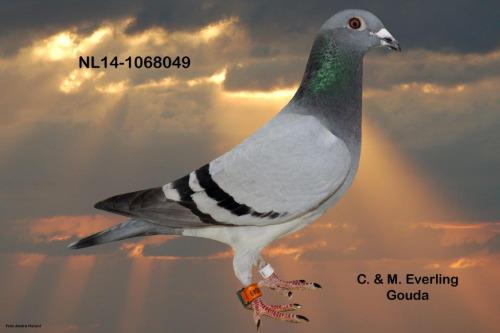 NL14-1068049
