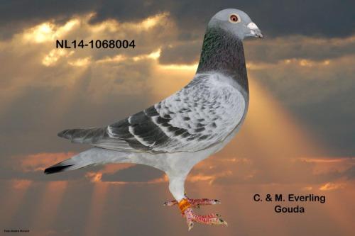 NL14-1068004