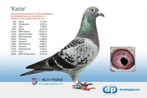 NL11-1742432