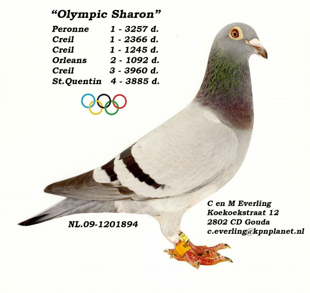 Olympic Sharon met prestaties