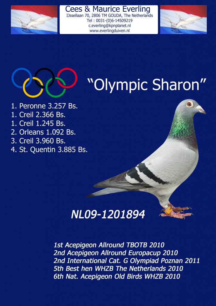 olympic_special_2013_links